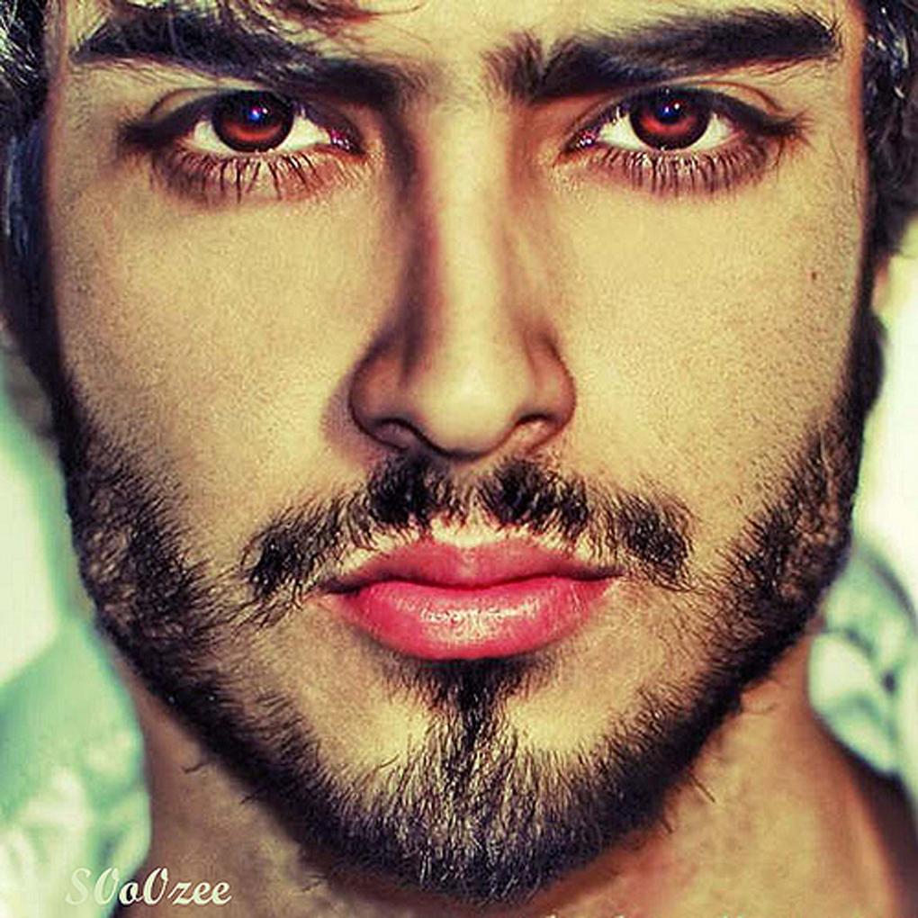 <b>Ahmed Zabedy</b> pics - 3405922441_68362029a