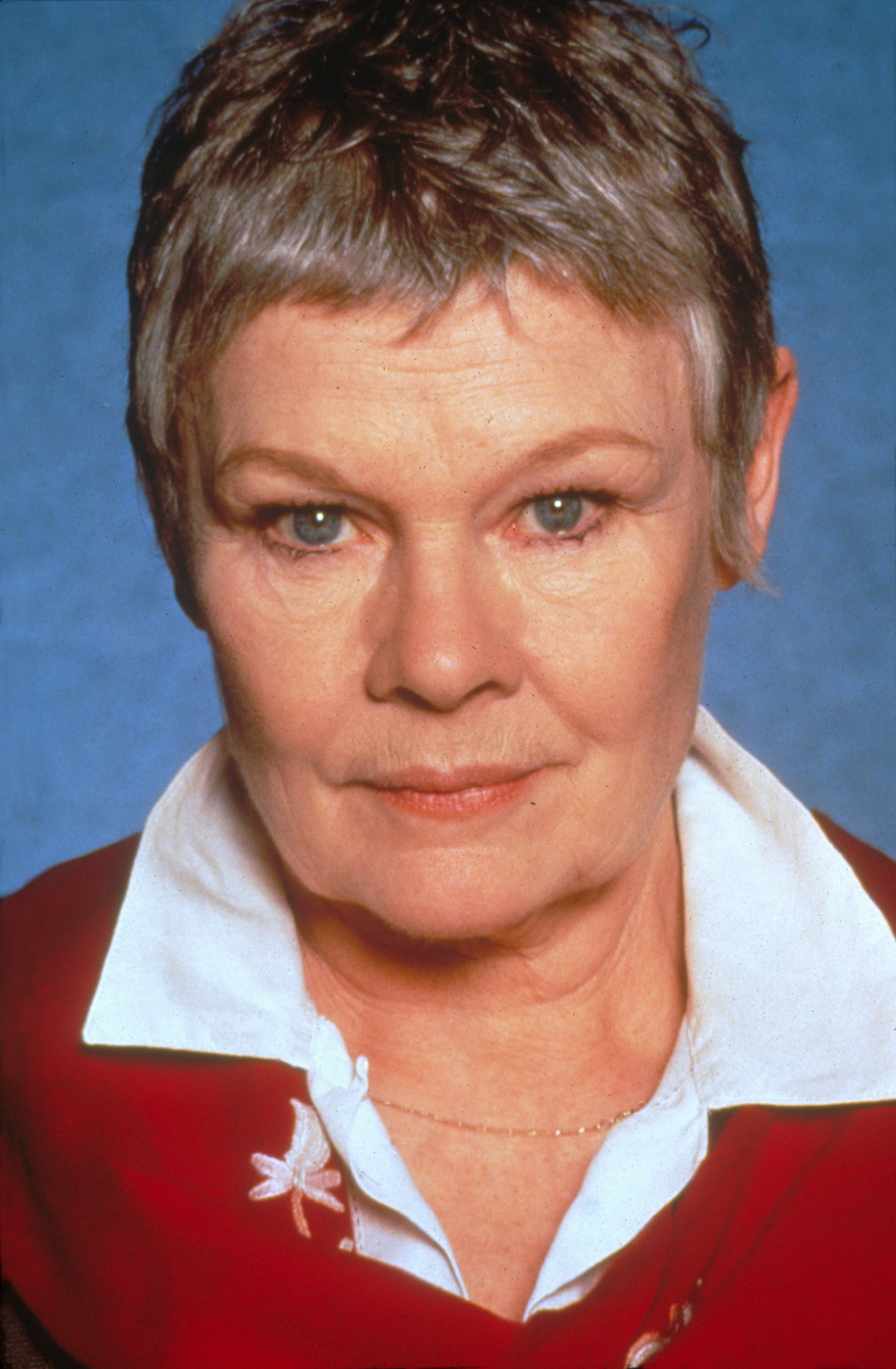 Judi Dench Photo 1 Of 8 Pics Wallpaper Photo 217331