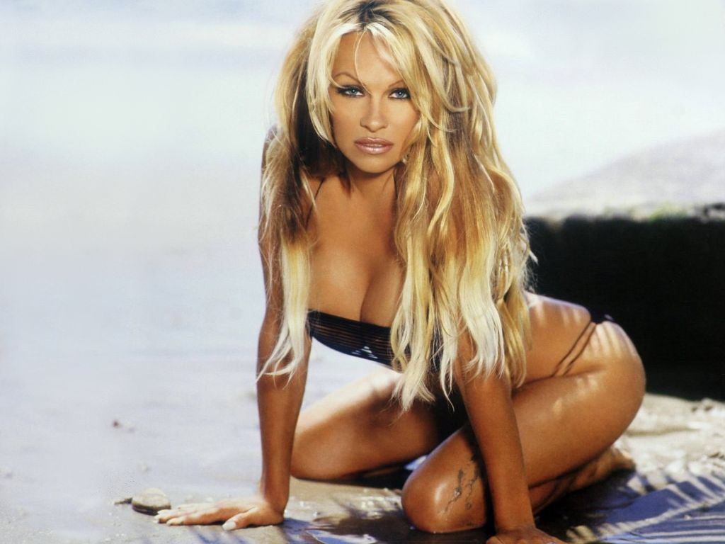 celebrity photos pamel... Pamela Anderson