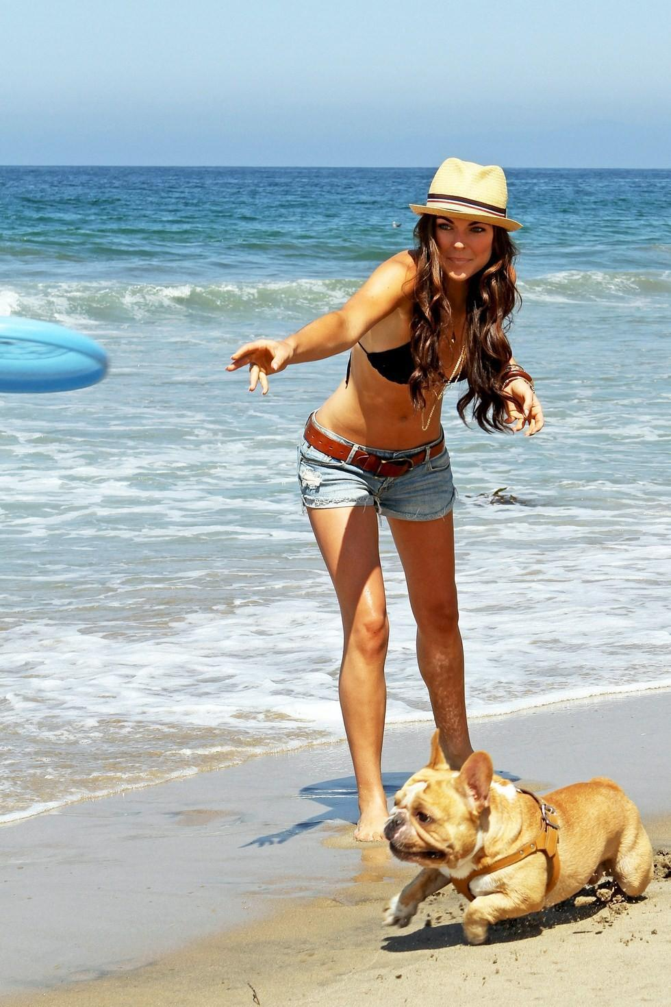 Top  Dog Beaches In California