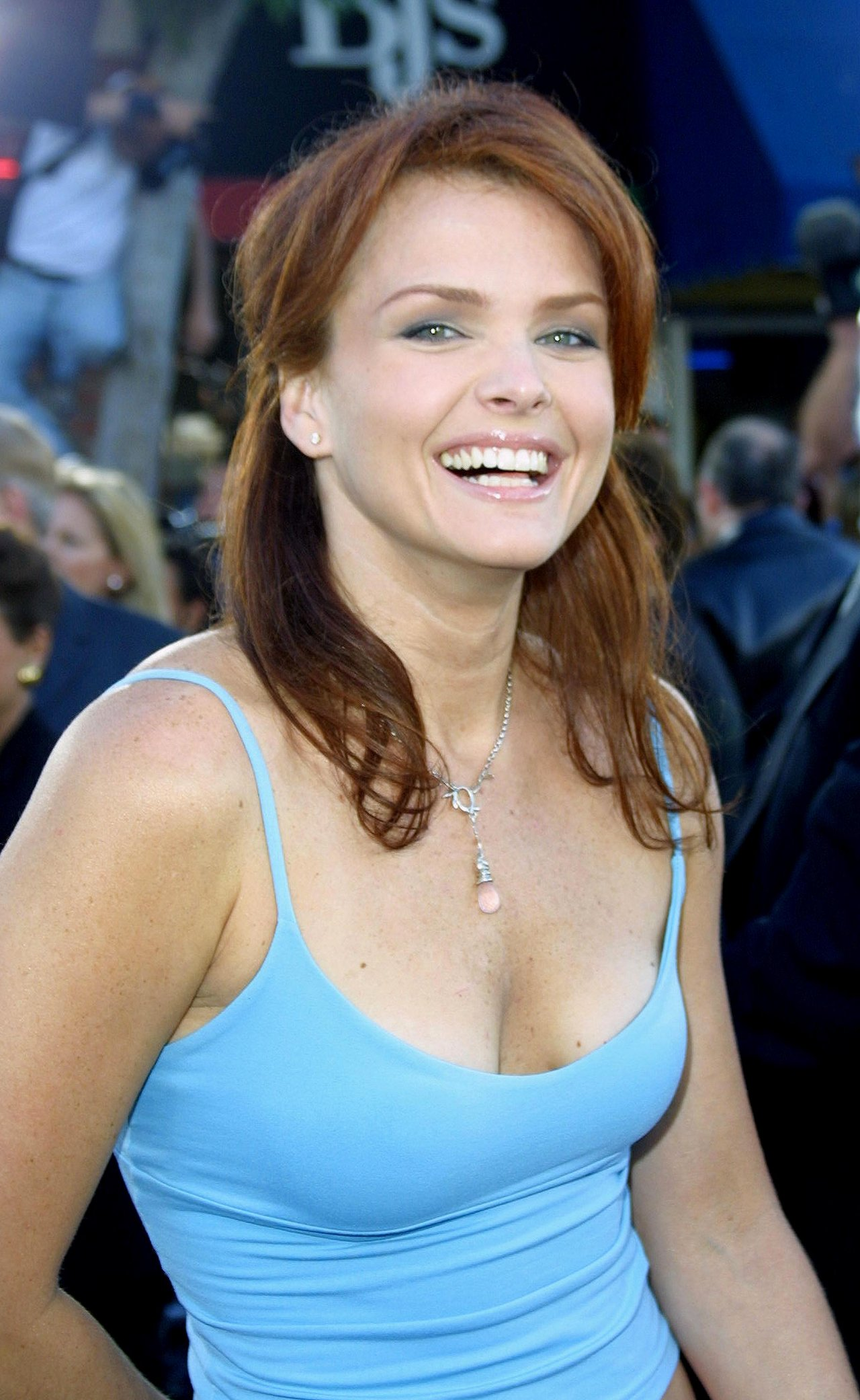 picture Dina Meyer