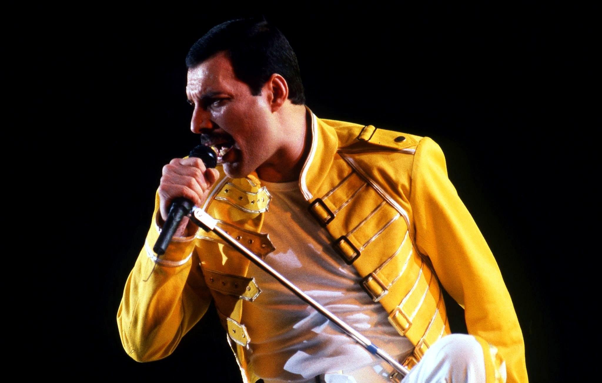 Design For Freddie Mercury Photo 908 Of 939 Pics Wallpaper Photo