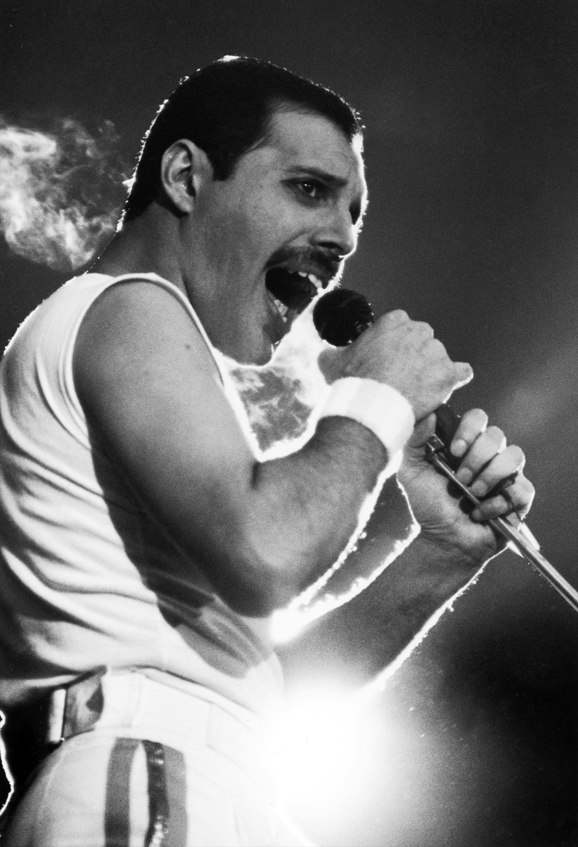 Freddie Mercury photo gallery - 939 high quality pics of Freddie ...
