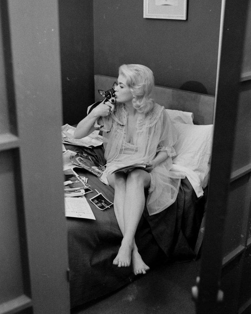 Jayne Mansfield photo 75 of 134 pics, wallpaper - photo ...