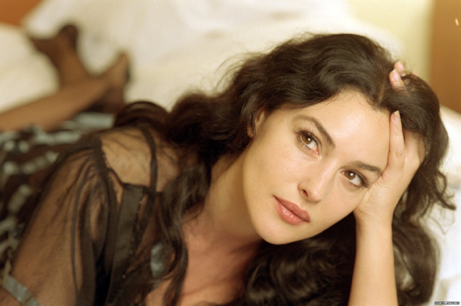 monica bellucci and vincent cassel film