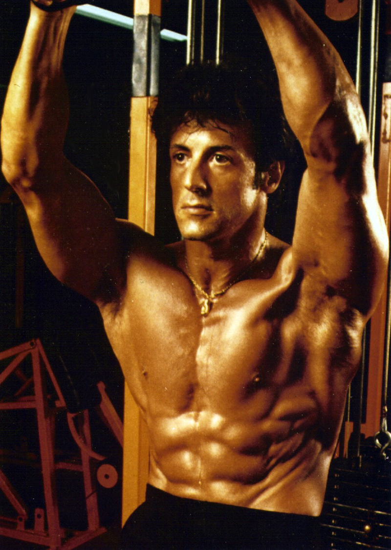 Sylvester Stallone Photo 66 Of 134 Pics Wallpaper Photo 480188