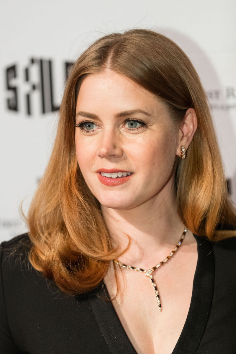 Amy Adams: pic #1089069