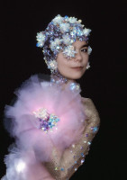photo 21 in Bjork gallery [id379274] 2011-05-19