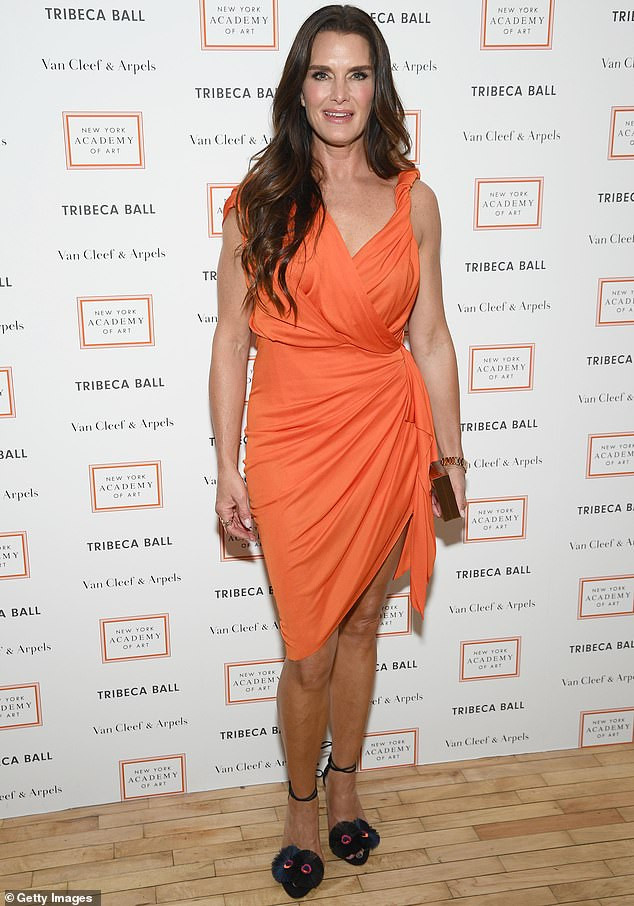 Brooke Shields: pic #1122157