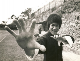 photo 6 in Bruce Lee gallery [id376642] 2011-05-11