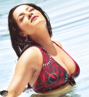 photo 13 in Celina Jaitley gallery [id520021] 2012-08-07