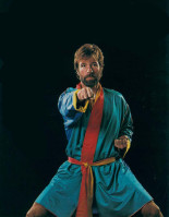 Chuck Norris pic #378780