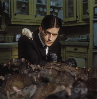 photo 4 in Crispin Glover gallery [id235183] 2010-02-11