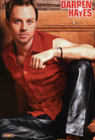 Darren Hayes pic #25394