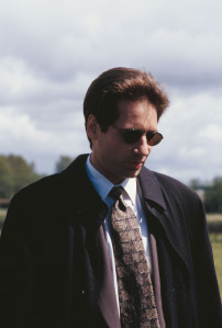 David Duchovny pic #446462