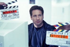 David Duchovny pic #446459