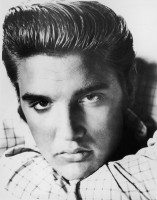 photo 16 in Elvis gallery [id250948] 2010-04-23