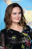 photo 11 in Emily Deschanel gallery [id1022561] 2018-03-21