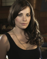 Erica Durance pic #215979