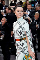 Fan Bing Bing pic #938005