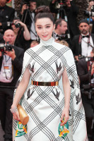 Fan Bing Bing pic #938006