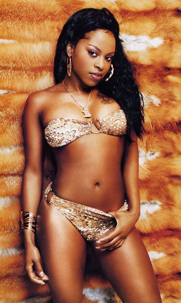 Foxy Brown photo 5 of 16 pics, wallpaper - photo #58262 - ThePlace2