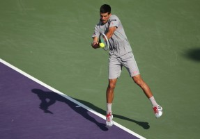 photo 10 in Novak Djokovic gallery [id686494] 2014-04-03