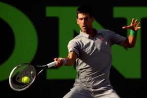 photo 8 in Djokovic gallery [id686502] 2014-04-03