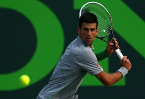 photo 17 in Djokovic gallery [id686469] 2014-04-03