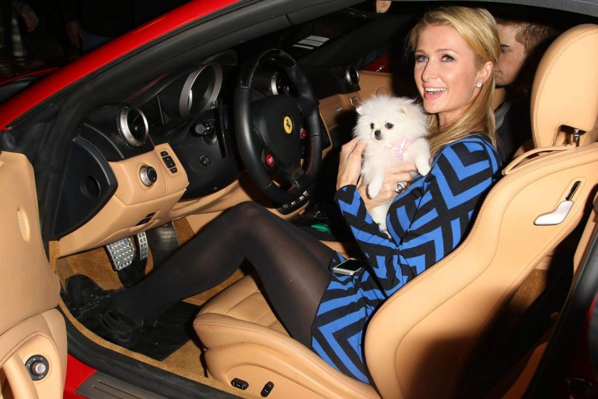 Can paris hilton nude car