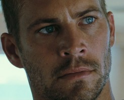 photo 18 in Paul Walker gallery [id531024] 2012-09-10