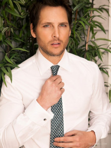 photo 5 in Facinelli gallery [id903107] 2017-01-17