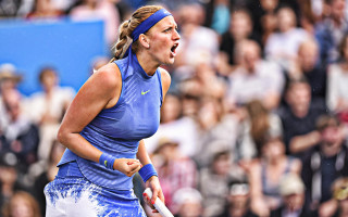 photo 3 in Kvitova gallery [id1198189] 2020-01-10