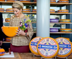 Queen Maxima of Netherlands pic #741429