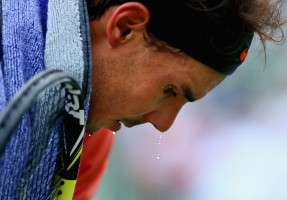 photo 13 in Nadal gallery [id686008] 2014-04-02