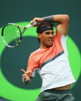 photo 8 in Nadal gallery [id686045] 2014-04-02