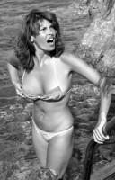 Raquel Welch pic #263377