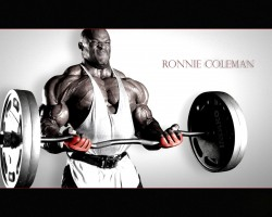 photo 5 in Ronnie Coleman gallery [id122385] 2008-12-26