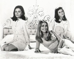 photo 9 in Sharon Tate gallery [id361211] 2011-03-24