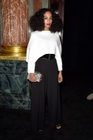 photo 28 in Solange Knowles gallery [id763932] 2015-03-13