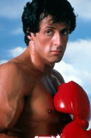 photo 11 in Stallone gallery [id560787] 2012-12-12