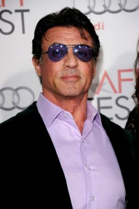 photo 3 in Stallone gallery [id305244] 2010-11-17