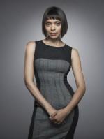 Tamara taylor sexy