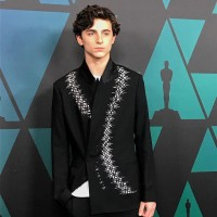 photo 15 in Timothee Chalamet gallery [id1098623] 2019-01-09