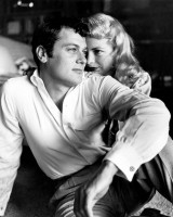 Tony Curtis pic #241477
