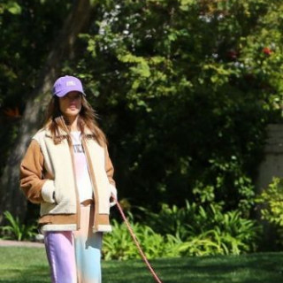 Alessandra Ambrosio went for a walk with her pet