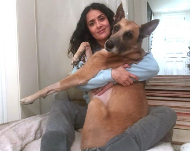 Salma Hayek Says Goodbye To Her Dog Blue