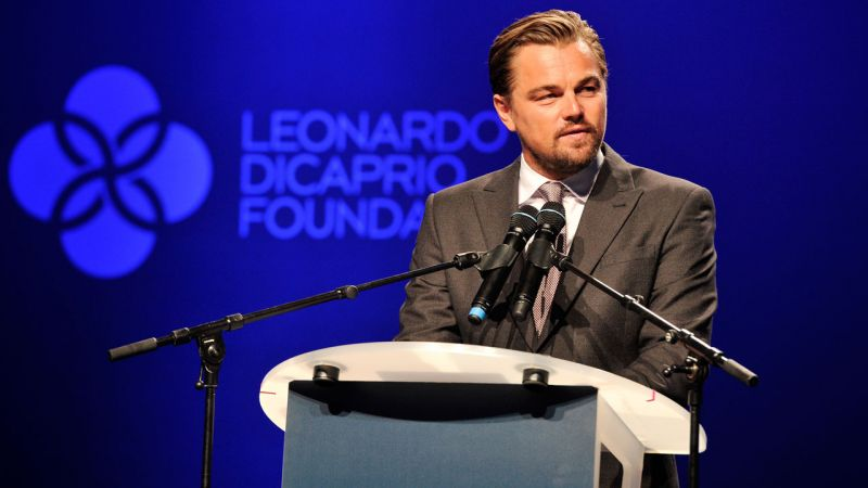 Leonardo DiCaprio Foundation Donates $1 Million for the Victims of Hurricane Harvey